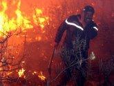 ارتفاع عدد ضحايا الحرائق في الجزائر إلى 65 شخصاً