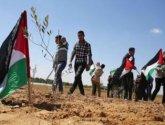 في ذكرى يوم الارض.. الاحتلال يسيطر على أكثر من 85% من أرض فلسطين التاريخية
