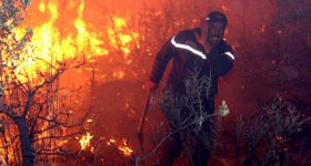 ارتفاع عدد ضحايا الحرائق في الجزائر ...