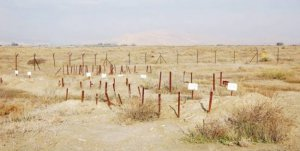 تجهيزات لفعاليات دولية واسعة للمطالبة باسترداد جثامين الشهداء